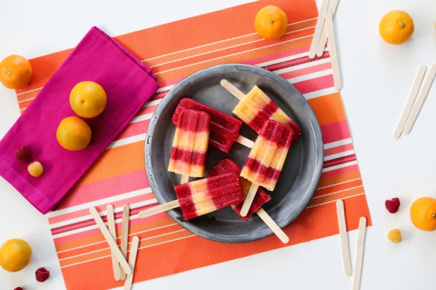 Raspberry-Tangerine-Emergen-C-Popsicles-Recipe-Salty-Canary-9-of-14-copy.jpg